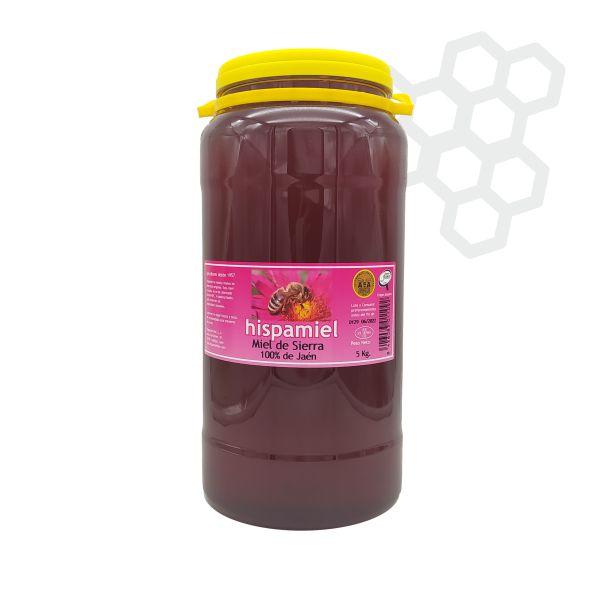 Garrafa de 5 kilogramos de miel multifloral de sierra.